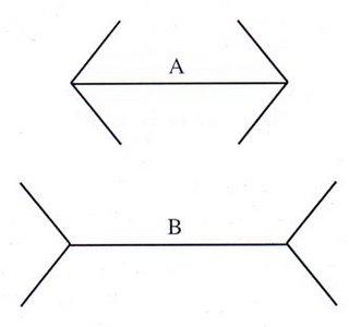 4.4 Ilusiones ópticas.